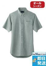 507 桑和 半袖ボタンダウンシャツ