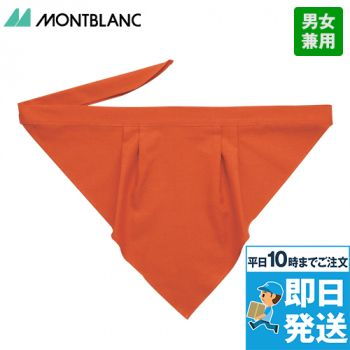 9-243 246 249 254 255 256 257 258 MONTBLANC 三角巾