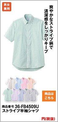 半袖ストライプの緑シャツ