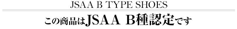 この商品はJSAA B種認定です